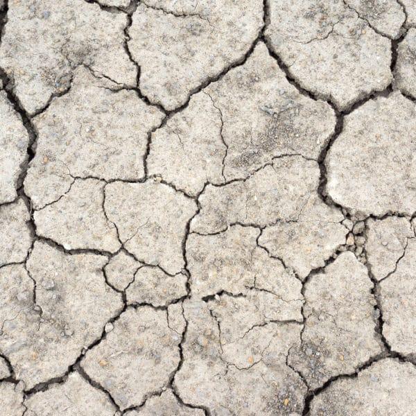 common soil problems