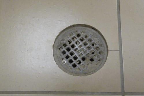 restaurant floor drain